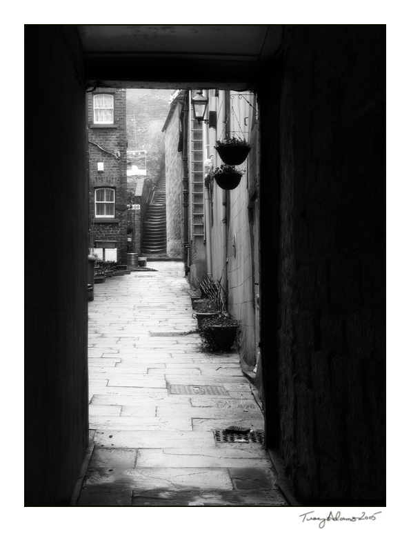 whitby_yard_by_vcrimson_photography (1)