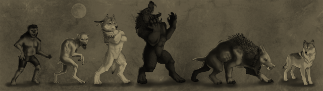 werewolf_archetypes_by_officerbadger-d3klpw3