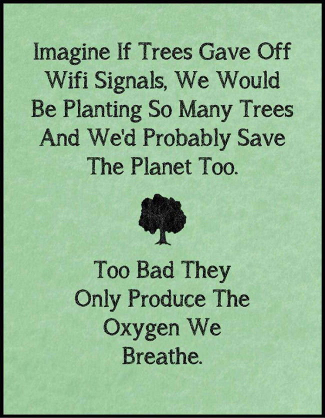 imagine-if-trees-gave-off-wifi-signals